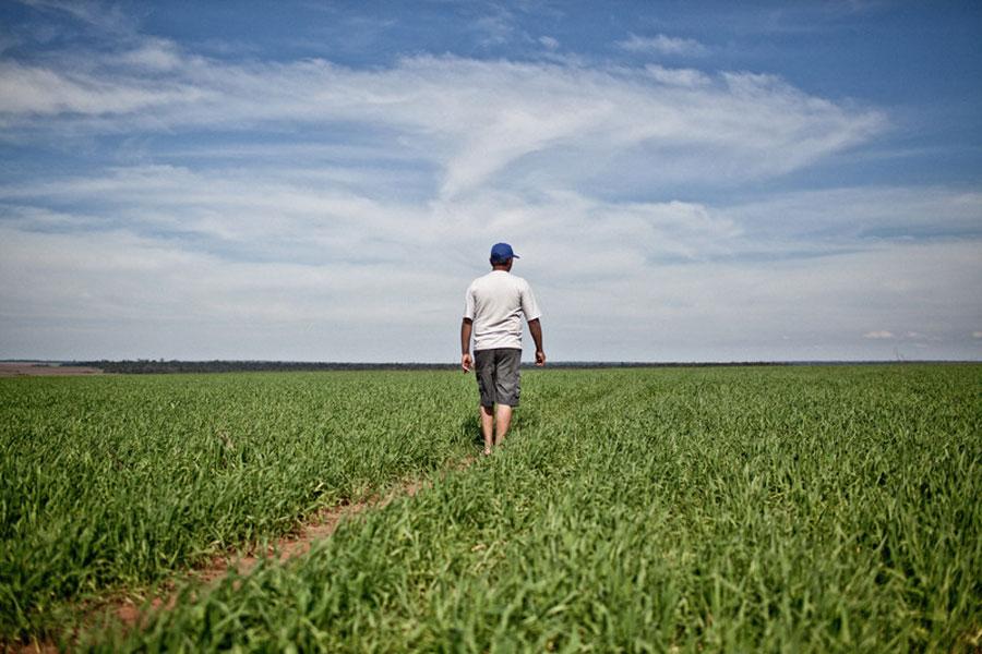 Deforestación en Paraguay. Foto: Pablo Tosco / Oxfam