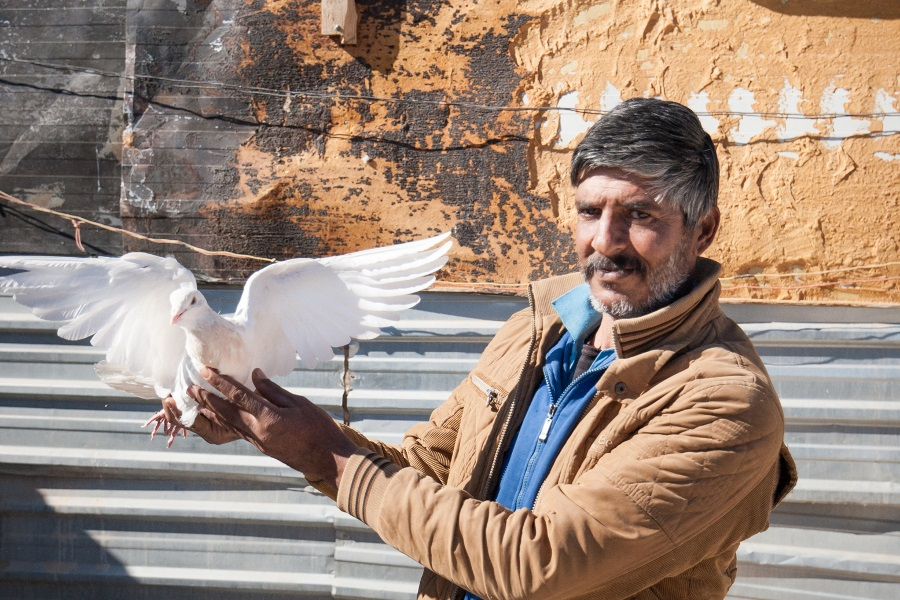 A refugee shows off one of his birds in Za'atari refugee camp, Jordan