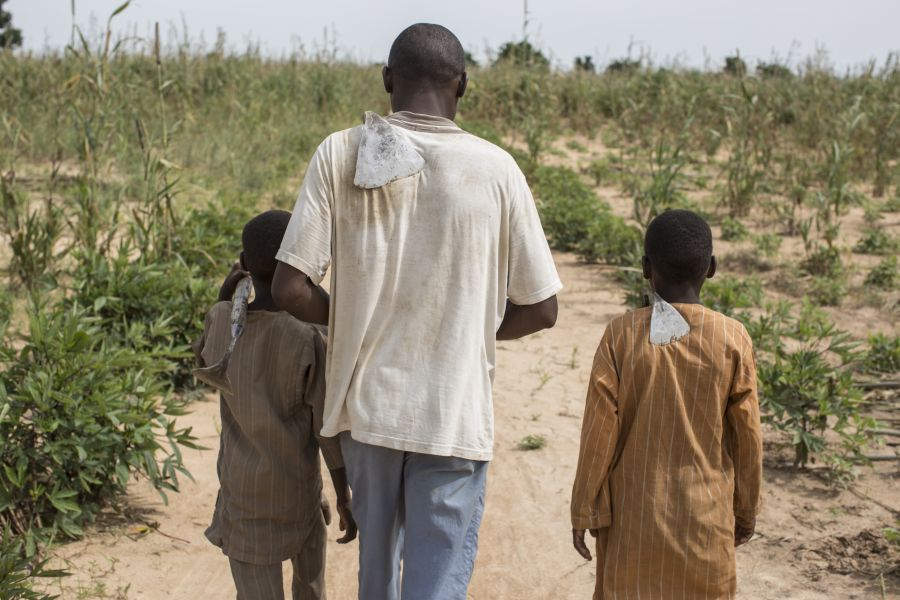 Hassan (name changed), 35, a father of six, walks with his sons through a field he rents on the outskirts of Maiduguri, Nigeria. Photo: Sam Tarling/Oxfam
