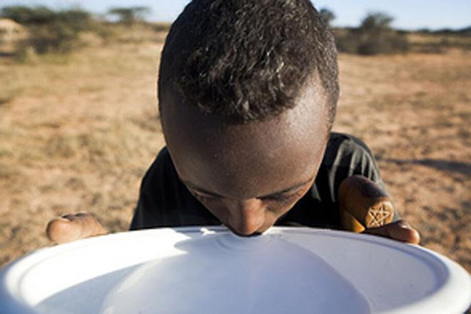 A young boy drinks fresh camel milk from a large bowl. Photo credit: Petterik Wiggers.