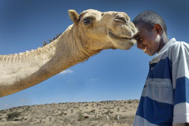 A boy and his camel, Somaliland. Photo credit: Petterik Wiggers.