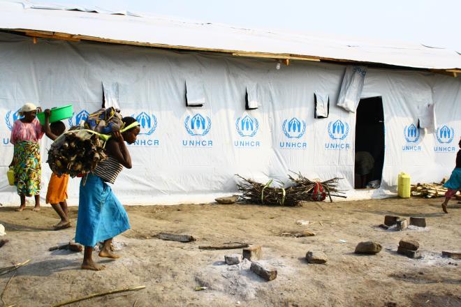 Une femme apporte du bois de chauffe au camp