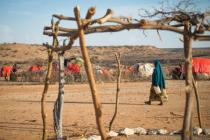 15 million people in Somalia, Ethiopia and Kenya are facing terrifying food shortages. Drought has caused crops to fail and cattle to die while the lack of clean water increases the threat of cholera and other diseases. Photo: Allan Gichigi/Oxfam