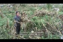 Cambio climático y pobreza en China: un enfoque multidisciplinar