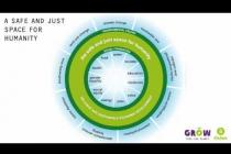 Introducing 'The Doughnut' of social and planetary boundaries for development