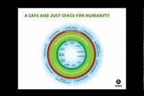 Doughnut Economics:  Who is Putting Pressure on the Planet