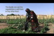 Food crisis in Sahel: A Chad market garden