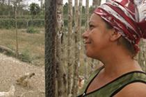 Gloria was able to expand her chicken coop with wire fencing.