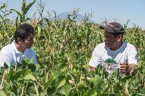 El programa de resiliencia ha cambiado la forma en la que Flor trabaja su huerto.