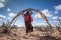 A woman carries the basic materials to construct her house again at a new location. Pastoralists are resettling in the Garadag district after a 60km journey on a truck with their animals. Somaliland, March 2017. Photo: Petterik Wiggers/Oxfam