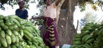 Faith with her bananas in Chiawa, Zambia