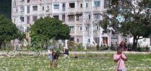 Personas trabajando en un campo de cultivo en Santiago de Cuba.