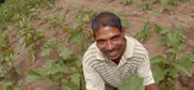 Joseph is one of 18 'lead farmers' in Kalmunai who have been trained by Oxfam in alternative agricultural methods so that they in turn can train members of their own producer-groups. Credit: Oxfam