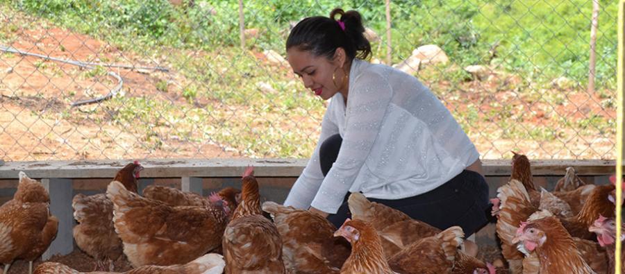 Mujeres rurales de Nicaragua inauguran planta avícola y de procesamiento de cerdos