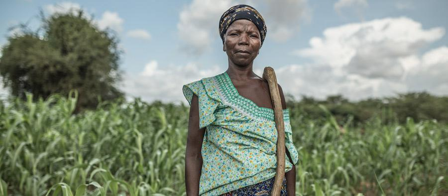 Noaga Ouèda, a 52-year-old farmer, lives with her 8 children and another 17 relatives in the community of Kario, Burkina Faso.