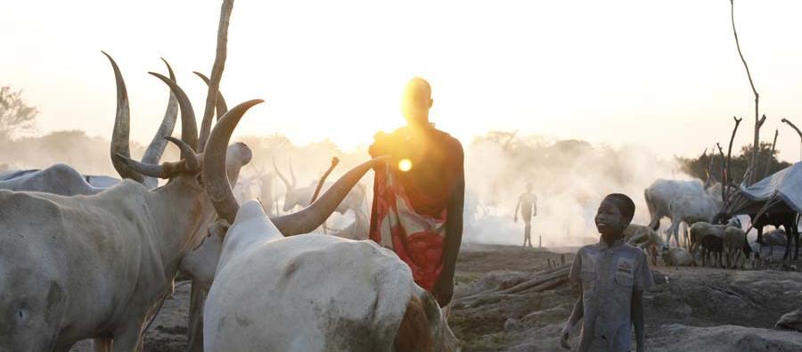 Herders, South Sudan