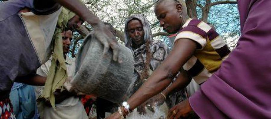 Angélique Kidjo a travaillé auprès de petits producteurs de coton en Afrique de l'Ouest