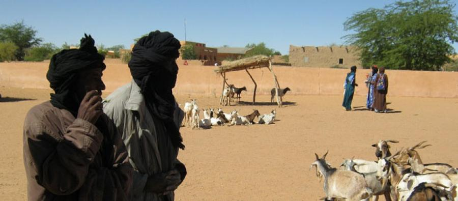 Pastoralists in the region of Gao, Mali. Photo: Oxfam