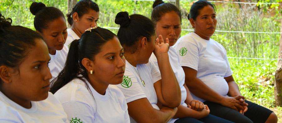 Un grupo de mujeres emprendedoras recibe una formación. Hoy han mejorado sus capacidades empresariales y generan más ingresos para sus familias de manera sostenible.