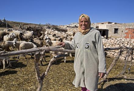 Atika helps take care of a neighbors livestock in her village as an extra income.